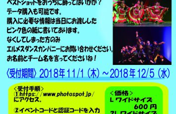 Nagoya Dance Festival 2018 ネット写真販売とDVDの追加予約のお知らせ